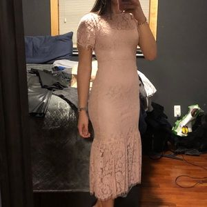 Blush Zara lace midi dress